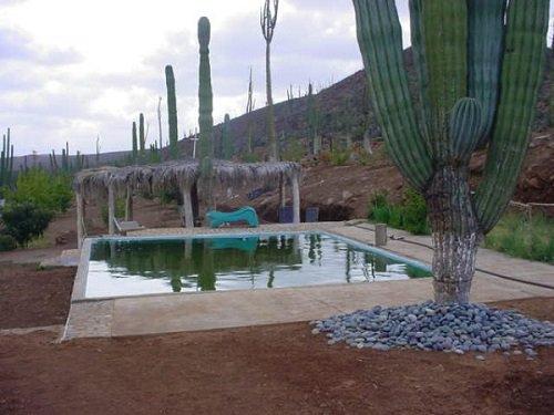 Paseo por Mexico Rancho Sauce en Ensenada
