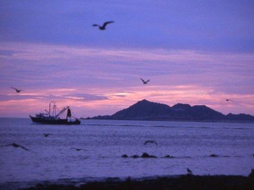Paseo por Mexico Biósfera Alto Golfo de California y Delta del Río Colorado en Mexicali