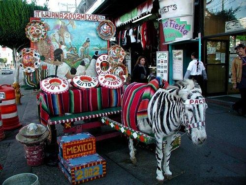 Paseo por Mexico Burro Cebra de Tijuana