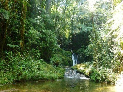 Paseo por Mexico Cascada de Atepatahua en Cuetzalan del Progreso