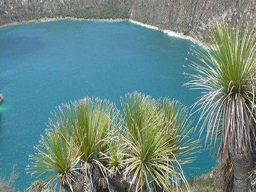 Paseo por Mexico Laguna de Atexcac en Guadalupe Victoria