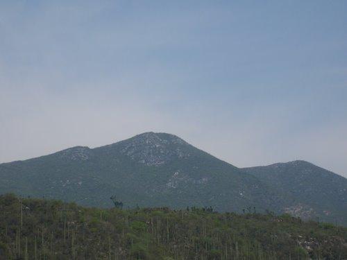 Paseo por Mexico Cerro del Tentzo en Molcaxac