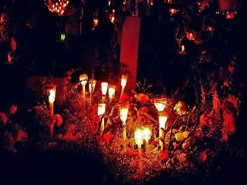 Paseo por Mexico Ofrendas de Día de Muertos en Xochitlán Todos Santos