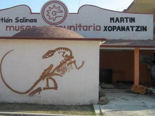 """Paseo por Mexico Museo Comunitario """"Martín Xopanatzin"""" en Zapotitlán"""