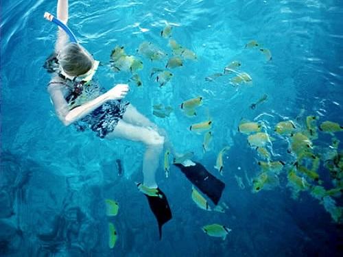 Paseo por Mexico Ecoturismo y Actividades al aire libre de Cozumel