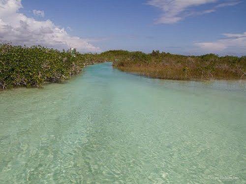 Paseo por Mexico Laguna Chunyaxché (Muyil) en Felipe Carrillo Puerto