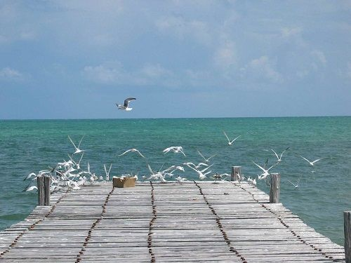 Paseo por Mexico Bahía de la Ascensión en Felipe Carrillo Puerto