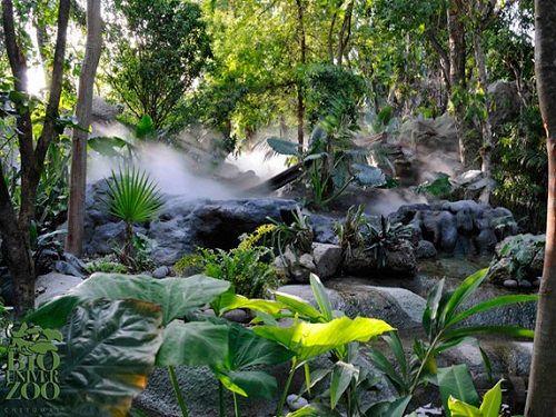 Paseo por Mexico Parque Zoológico Biouniverzoo en Othón P. Blanco