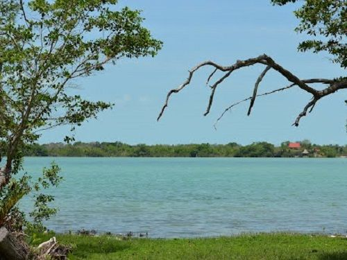 Paseo por Mexico Laguna Guerrero en Othón P. Blanco